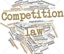 The Vietnam Competition Law 2004