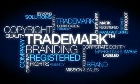 Vietnam trademark protection.