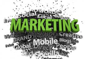 Establishment of Marketing Company in Vietnam
