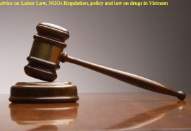 Advice on Labor Law, NGOs Regulation, policy and law on drugs in Vietnam