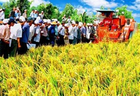 Agricultural production may borrow a loan without collateral to vnd 3 billion