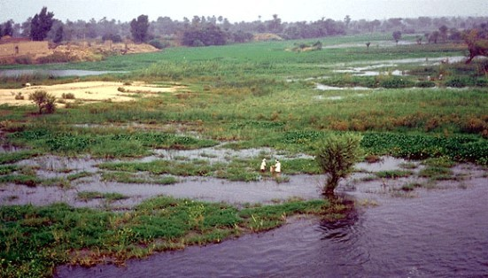 Combat the encroachment upon land around water sources protection corridors
