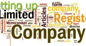Advice on set up limited liability trading company in Vietnam