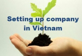 Establishing a 100% owned foreign company for producing software in Vietnam